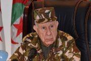 الجنرال شنقريحة أغبى وأحقر جنرال حكم الجزائر