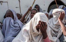 الضباع تأكل جثث الفتيات المغتصبات في إثيوبيا