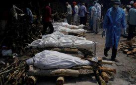 وفيات كورونا في الهند تتجاوز 250 ألفاً