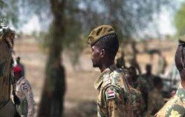 جيشنا لم يخترق حدود إثيوبيا