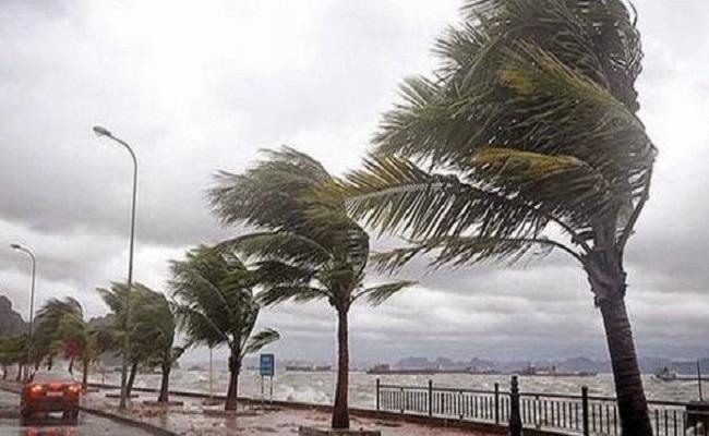 نشرة تحذيرية لرياح قوية وأمواج عالية على السواحل