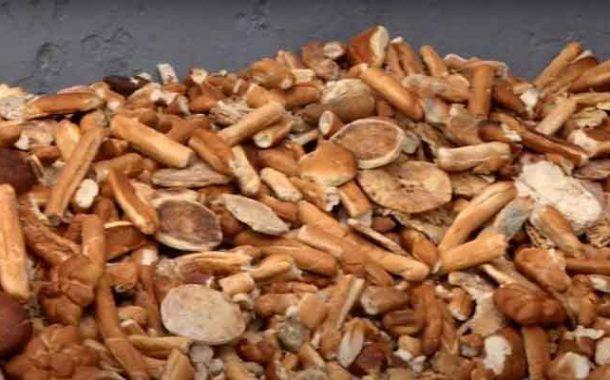 جمع 65 طنا من الخبز المرمي في 26 بلدية بالعاصمة في شهر رمضان