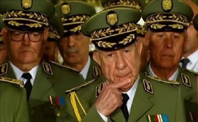 يجب محاسبة الفاسدين وإسقاط الجنرالات قبل أن تنهار الجزائر