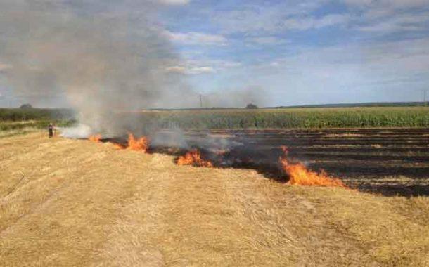 حريق يلتهم  50 هكتارا من القمح الصلب بغليزان