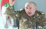 الضباط الأحرار هم الحل لإسقاط الطاغية الجنرال شنقريحة