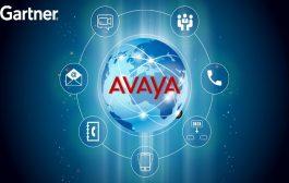 أڤايا تدعم تطوير نماذج العمل المستقبلية...