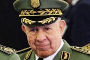حان الوقت لإسقاط الجنرال اللوطي شنقريحة قبل أن تغرق الجزائر