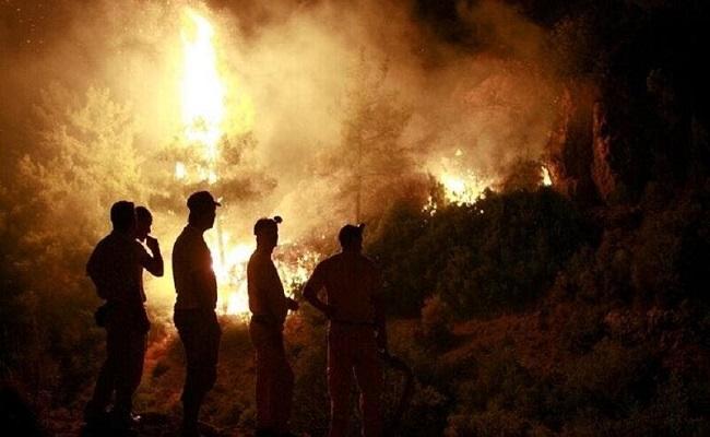 اعتقال أشخاص الذين افتعلوا الحرائق في تركيا
