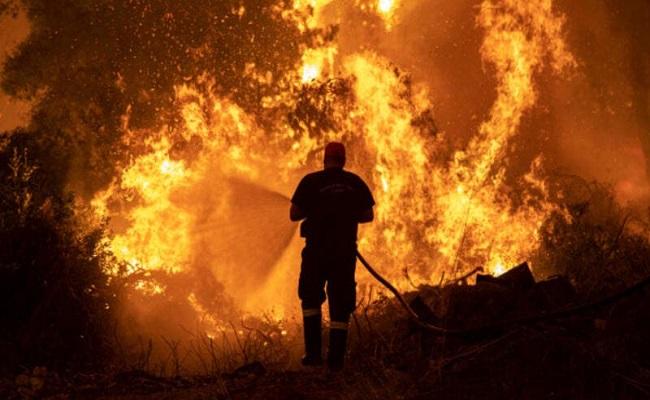 الحرائق تلتهم غابات اليونان