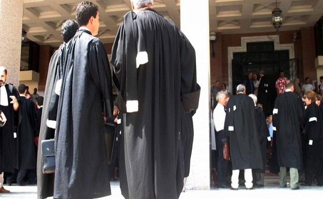 محاميو الجزائر يطالبون بالكشف عن المتسببين في الحرائق