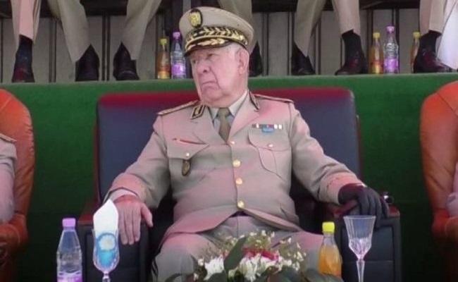 هل يصبح الجنرال شنقريحة هو سيسي الجزائر