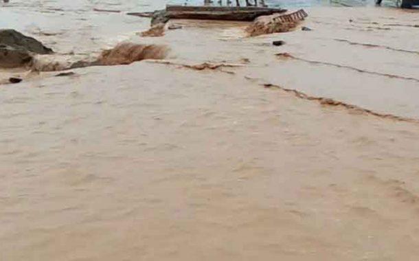 الأمطار تتسبب في قطع الطرقات و نفوق المواشي في عدد من الولايات