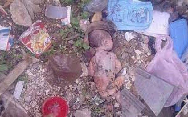 في الجزائر يوميا يتم العثور على أطفال رضع في الشوارع وتسجيل عشرات الحالات للإعتداء جنسي على الأطفال